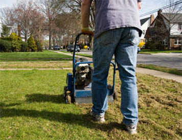 Residential lawn care services in Calgary 2