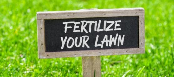 The Benefits of Fertilizer