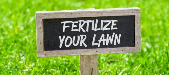 The Benefits of Fertilizer