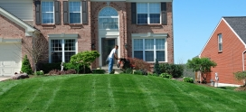 Importance of Hiring A Lawn Care Company