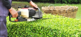 The Real Benefits of Lawn Care Maintenance and Weed Control
