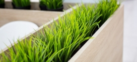How to store grass seed over the winter to use in spring