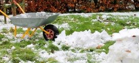 Protecting your lawn from snow: Winter care tips