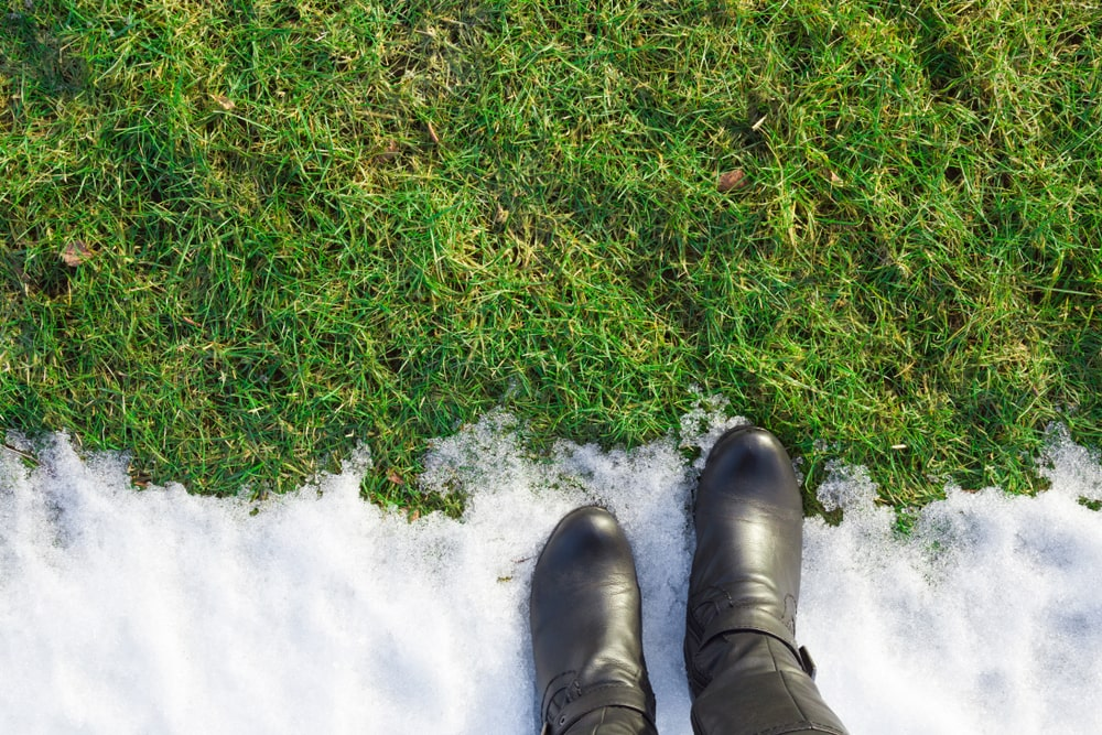 Lawn care during winter Canada