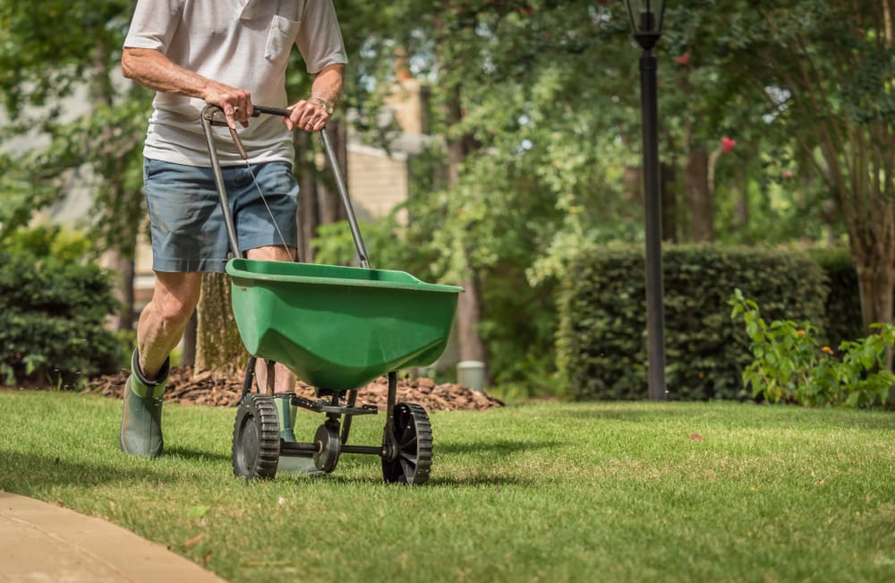 3 tips for eco-friendly yard maintenance in Calgary