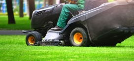 A complete summer lawn care guide