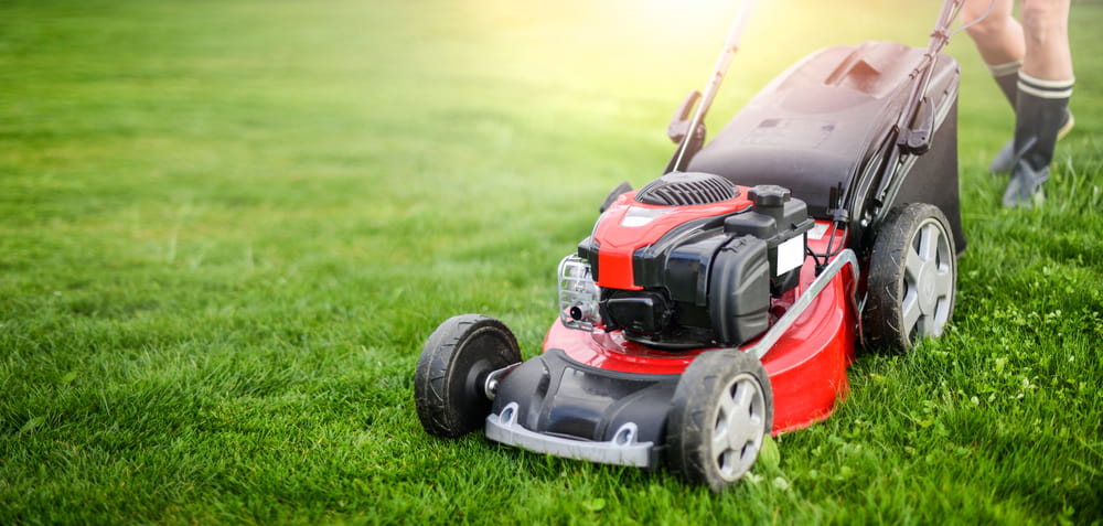How to maintain your lawn in extreme heat