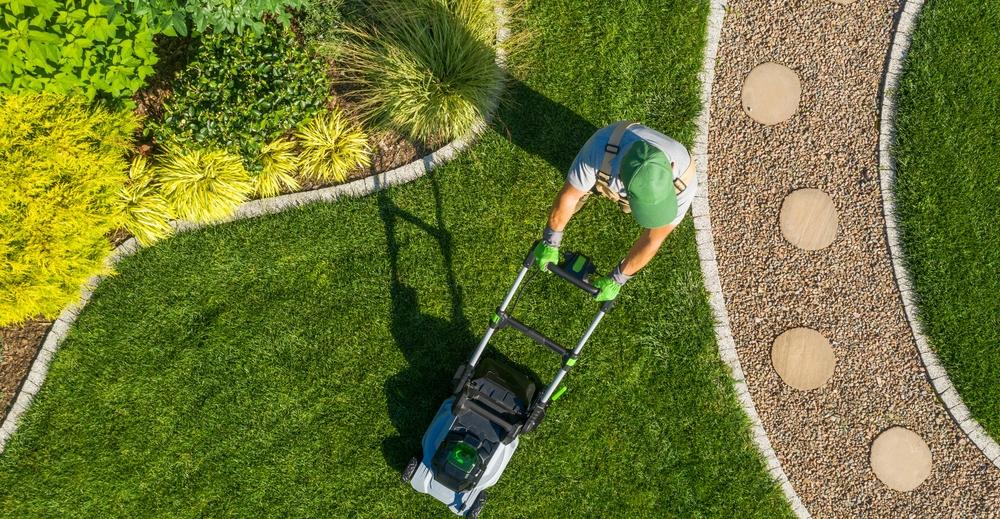 4 essential fall lawn care steps in Alberta